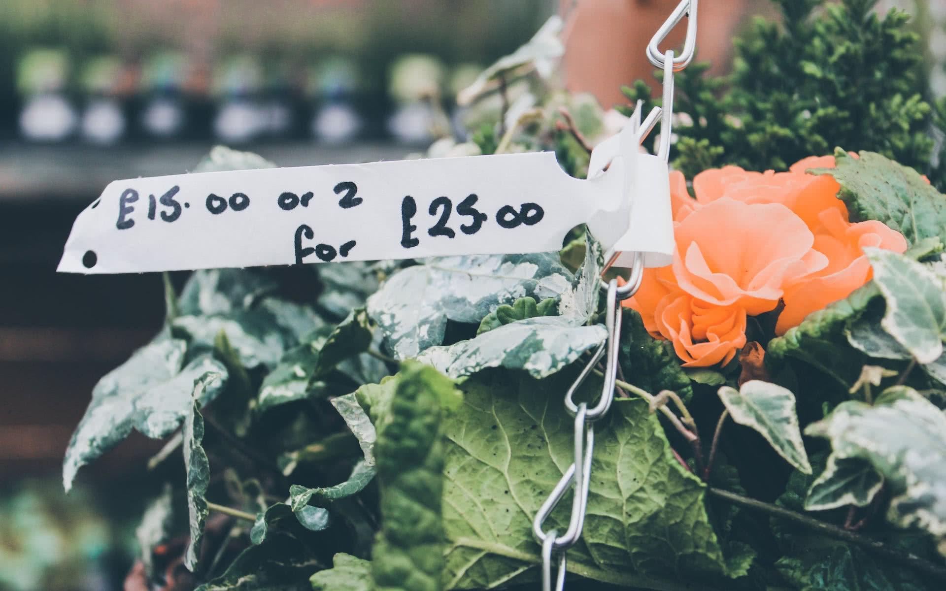 9 Things to consider when planning Pricing